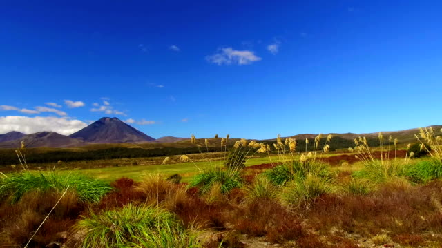 tongariro national park - tongariro national park stock videos & royalty-free footage