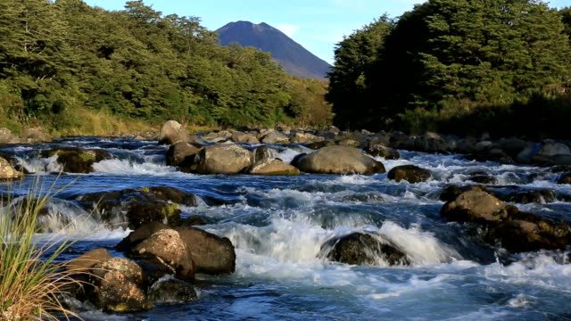 tongariro river and volcano, north island, new zealand - north island new zealand stock videos & royalty-free footage
