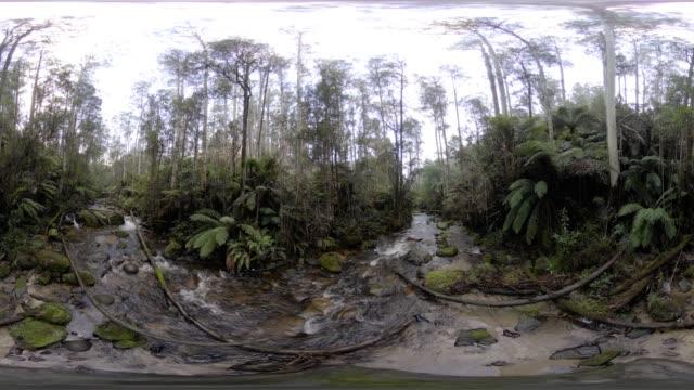 vídeos de stock e filmes b-roll de tooronga falls - panorama equiretangular
