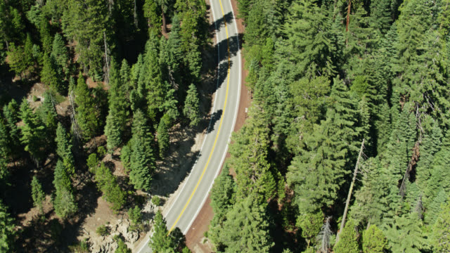 top down aerial of volcanic legacy scenic byway near lassen volcanic national park - amerikanische sierra nevada stock-videos und b-roll-filmmaterial