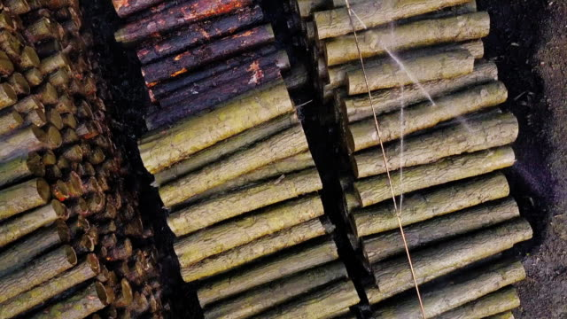 top down aerial view of lumber yard - industria forestale video stock e b–roll