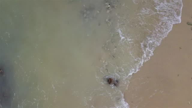 stockvideo's en b-roll-footage met top down aerial view van het strand en de rots - bovenste deel