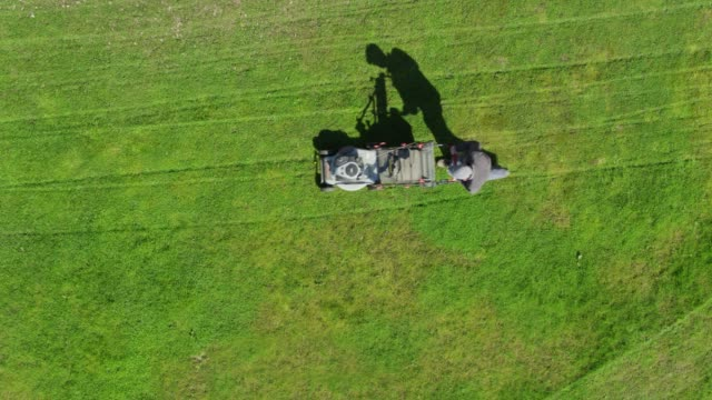 top down drone shot of man cutting grass in backyard - prato rasato video stock e b–roll