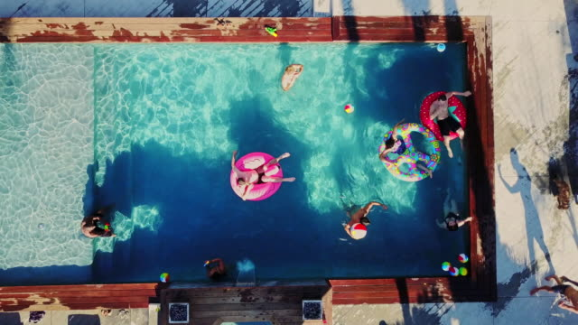 top down drone shot of people playing around in a backyard swimming pool - pampered dog stock videos and b-roll footage