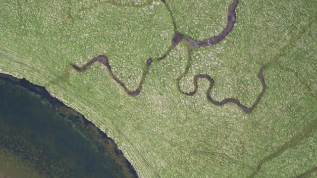 vídeos y material grabado en eventos de stock de arriba abajo tiro de drone del río cuckmere serpenteo hacia el canal de la mancha - canal de la mancha