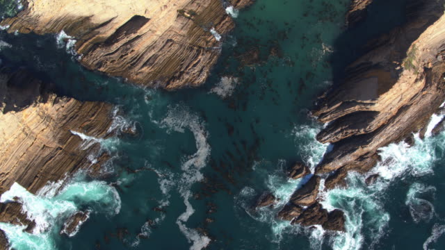 Top Down Drone Shot of Turbulent Water Swirling Around Kelp Beds and Rocks