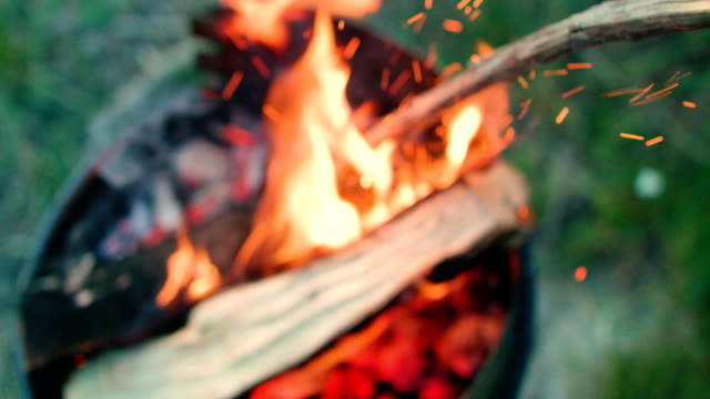 top down view of grill with burning wood - grigliare video stock e b–roll