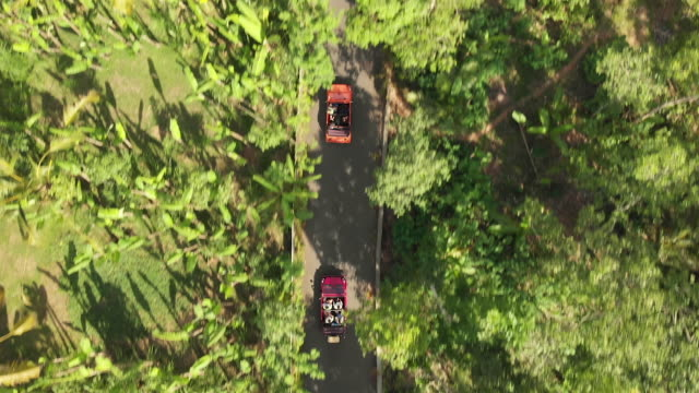 top down view of two cars on a country road in indonesia - two objects stock videos & royalty-free footage