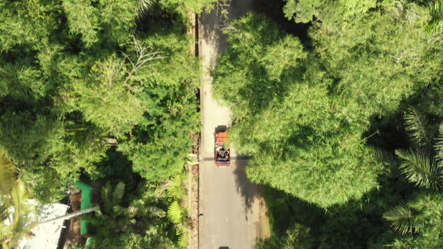 vidéos et rushes de vue de haut vers le bas de deux voitures sur une route de pays en indonésie - deux objets