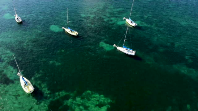top down view over sailing boats on lake geneva, switzerland - lake geneva stock videos & royalty-free footage