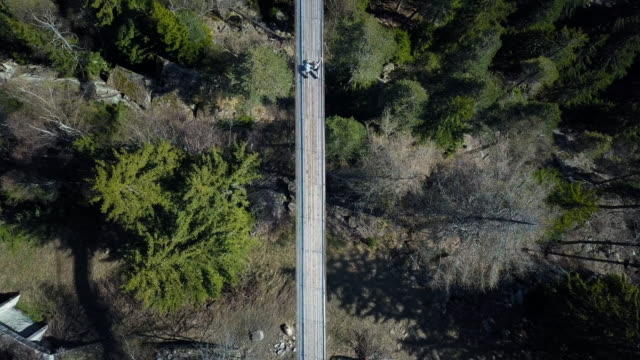 top down view with a drone over a forest with a suspension bridge and a river flowing underneath. located in switzerland. hängebrücke fürgangen mühlebach. shot in 4k. - suspension bridge stock videos & royalty-free footage