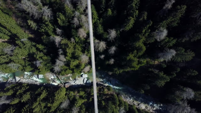 top down view with a drone over a forest with a suspension bridge and a river flowing underneath. located in switzerland. hängebrücke fürgangen mühlebach. shot in 4k. - hängebrücke stock videos & royalty-free footage
