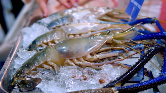 top ingredient - seafood stock videos & royalty-free footage