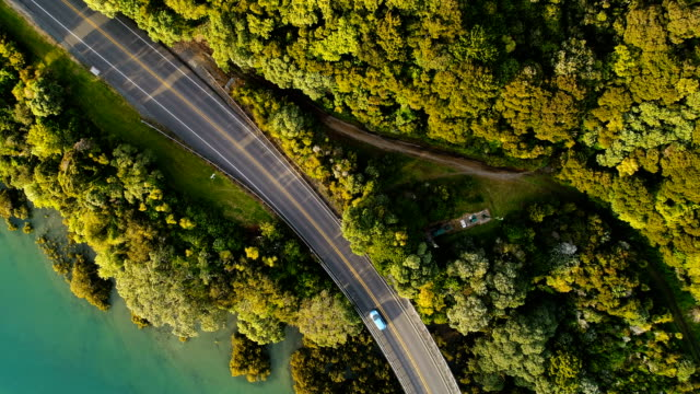 top looking down at bridge with moving cars. - bush stock videos & royalty-free footage