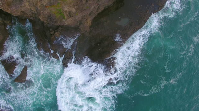 Top looking down at Piha Beach, Auckland, New Zealand.