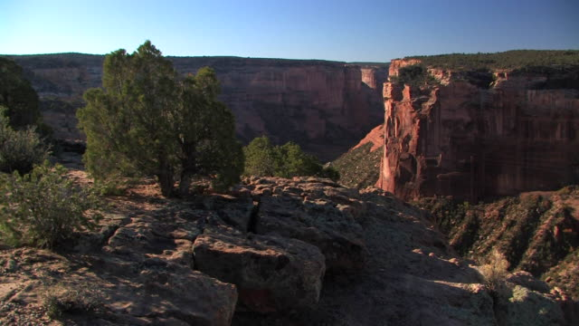 ms top of canyon with rock walls and tree/ canyon de chelly national monument, arizona - canyon de chelly stock videos & royalty-free footage