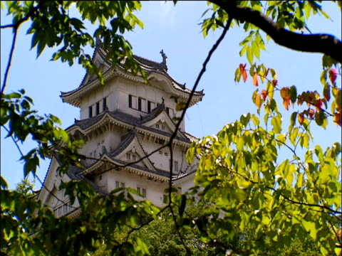 top of himeji castle seen through leaves japan - 城点の映像素材/bロール
