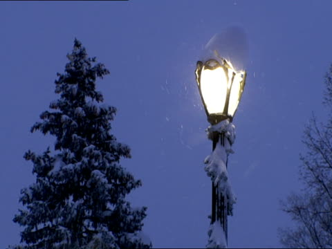 top of lighted street lamp pole wrapped in snow covered garland, evergreen tree bg. no people, light snowing. holidays, memories, white christmas,... - フラワーアレンジメント点の映像素材/bロール