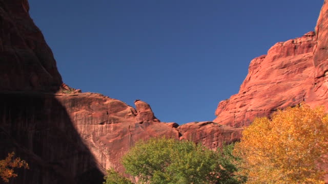 ms top of rock wall/ zo ws trees at bottom of canyon with fall leaves/ canyon de chelly national monument, arizona - canyon de chelly stock videos & royalty-free footage