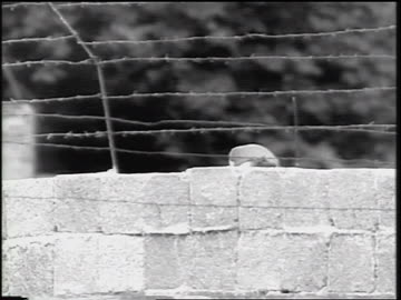 vidéos et rushes de top of soldier's head marching on other side of berlin wall / cold war / germany - 1961