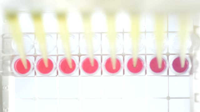 top view : adding colorful sample - pipette stock videos & royalty-free footage
