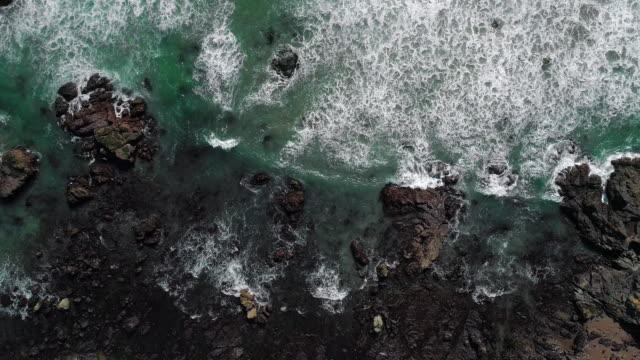 """頂視圖, """"鳥景"""" 的鳥圖周圍的懸崖和岩石周圍的浪花。向前平移相機運動。位於美國加利福尼亞州聖西面的坎布里亞州海洋保護區附近的卡布裡略公路沿線的太平洋海岸 - 漂白的 個影片檔及 b 捲影像"""