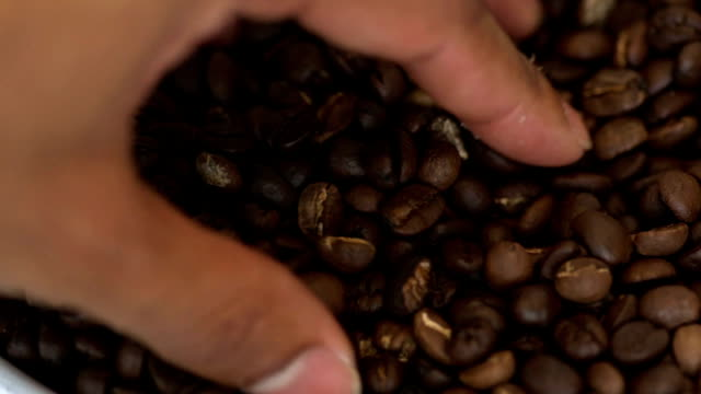 top view: human touch coffee bean - caffeine stock videos & royalty-free footage