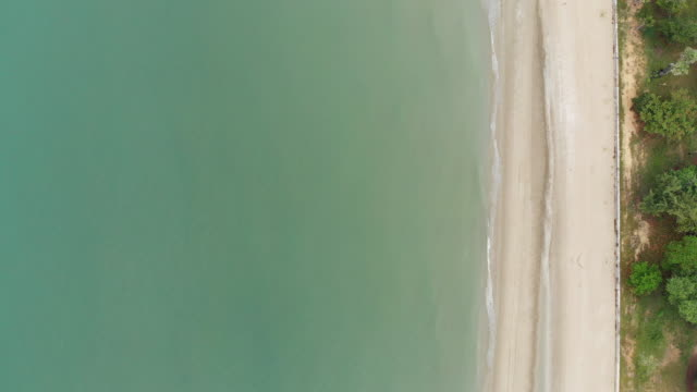 vídeos de stock e filmes b-roll de 4k top view of beach and row of tree. - plano picado