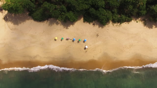 Top view of beach umbrellas at Toque-Toque Pequeno beach