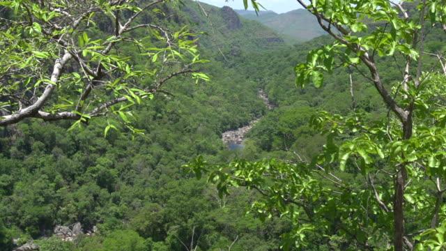 vidéos et rushes de top view of 'black river' at 'chapada dos veadeiros' national park - amérique du sud