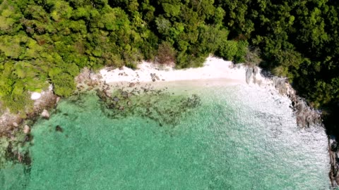 top view of emerald bay with forest on island in tropical sea - bay of water stock videos & royalty-free footage