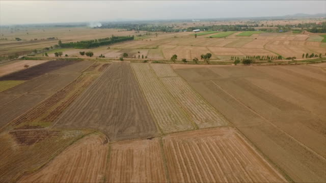 Top view of harvested field
