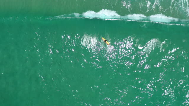 top view of man surfer resting on surfboard - tahiti stock videos & royalty-free footage