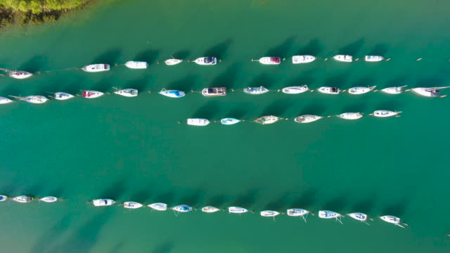 Top View of Parked boats in line at Stillwater, Auckland, New Zealand.