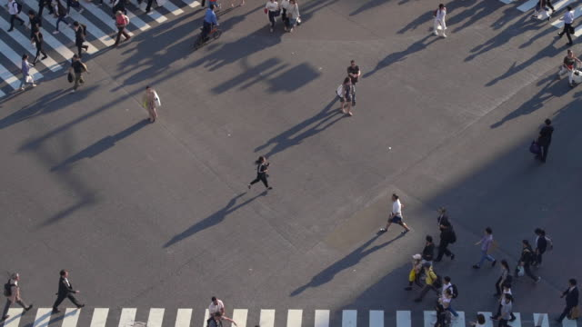 slo mo top view of pedestrians at shibuya crossing with long shadow in tokyo, japan - on the move stock videos & royalty-free footage