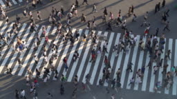 SLO MO Top View of Pedestrians at Shibuya crossing with long shadow in Tokyo, Japan