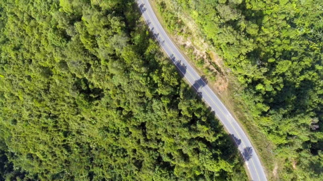 Top view of Road pass through Mountain with Green Forest