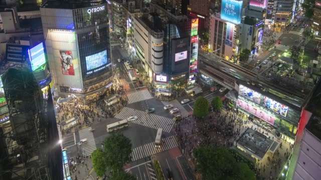 draufsicht der shibuya-kreuzung in der nacht - road junction stock-videos und b-roll-filmmaterial