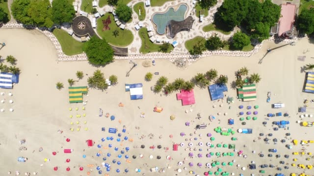 top view of tropical beach - tourist resort stock videos & royalty-free footage