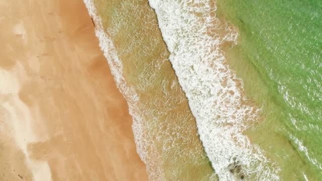 波のスプラッシュのトップビュー。 - ニュージーランド べイ・オブ・アイランズ点の映像素材/bロール