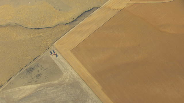 vidéos et rushes de ms aerial top view of wheat fields patterns in broadwater county / montana, united states - patchwork landscape