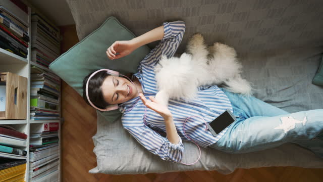 top view of young woman lying on the sofa and playing with her dog while listening music - lying down stock videos & royalty-free footage