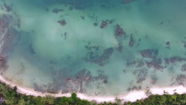 top view meer und strand mit klarem wasser und welle brechen, aerial video - klammer stock-videos und b-roll-filmmaterial