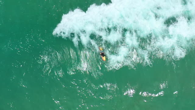 top view slow motion of man surfer resting on surfboard - tahiti stock videos & royalty-free footage