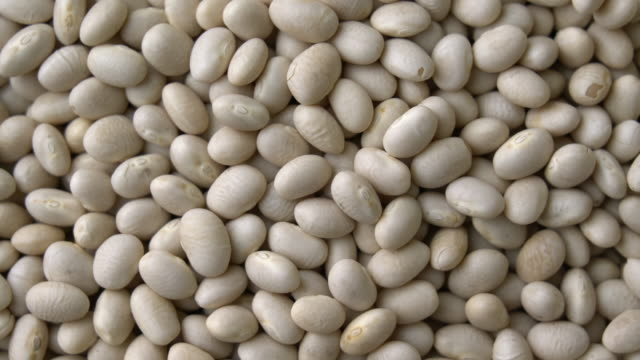 top view: small white beans rotating with close up shot - bean stock videos & royalty-free footage