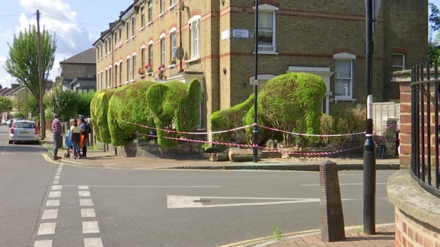 Topiary elephants on Romilly Road Finsbury Park damaged by car crash ENGLAND London Finsbury Park Romilly Road EXT Various shots of damaged topiary...