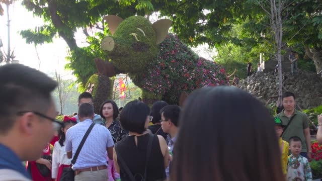 Topiary pig symbol made by hedge tree to celebrate Tet and Chinese New Year. Public park next to Ngoc Son and Hanoi, Vietnam.