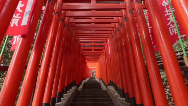 torii -the gate of shrine- - shrine stock videos and b-roll footage