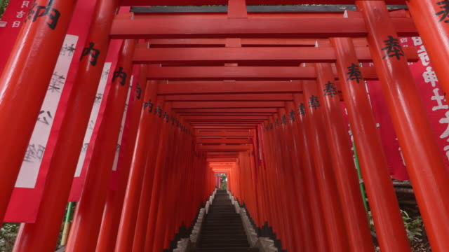 torii -The gate of shrine-