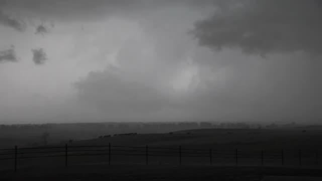 vídeos de stock e filmes b-roll de a tornado on the horizon - gado animal doméstico